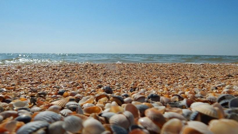 Пять лучших мест в России для отдыха с детьми на море.