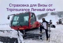 Tripinsurance